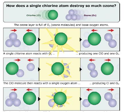 chlorine plus ozone