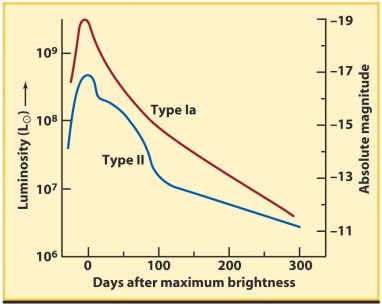 Type Ia luminosity profile