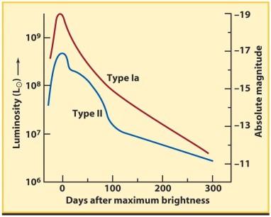 Type Ia luminosity profile