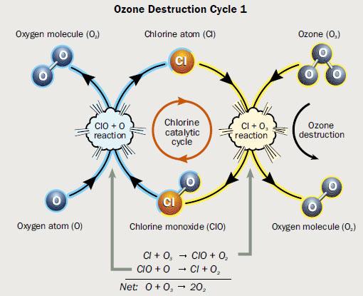 OzoneCatalysis