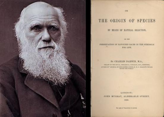 Darwin and Origin of Species