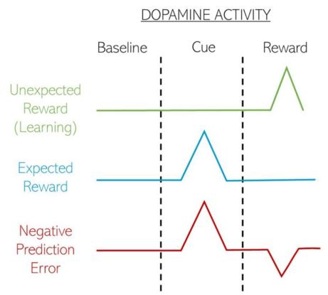 dopamine activity spikes